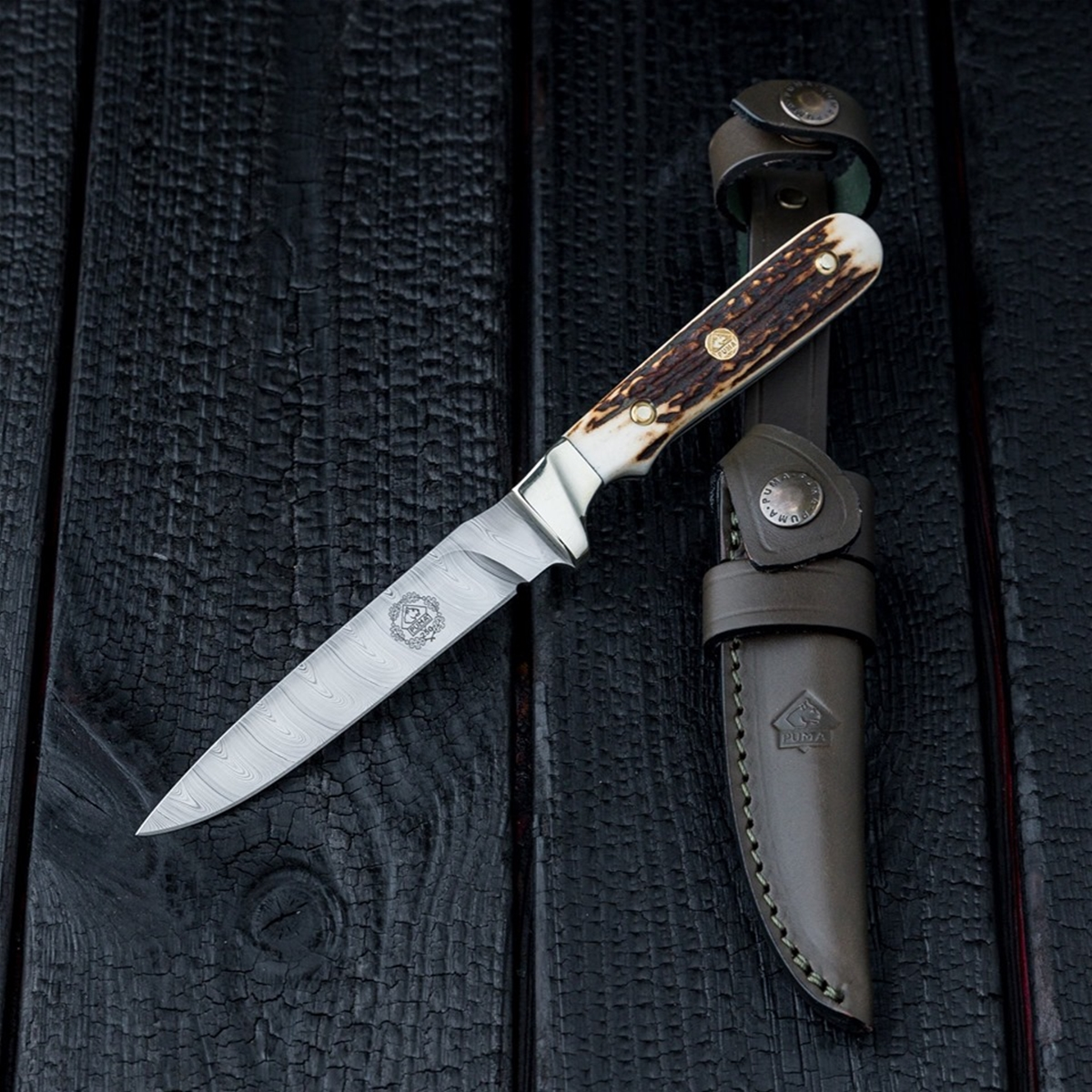 Puma Knives 250 Year Anniversary Stag Damascus Steel German Made Hunting Knife with Leather Sheath